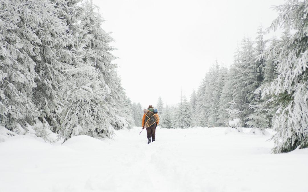 Rewilding ideeën voor onder de kerstboom